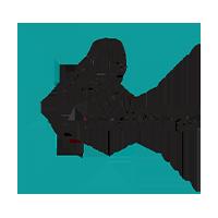 nosokomeio papageorgiou